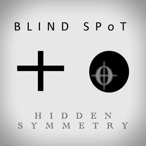 Blindspot by Hidden Symmetry